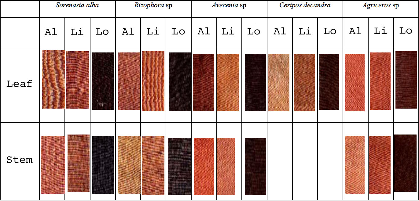 Natural Brown Dyes - Asian Textile Studies