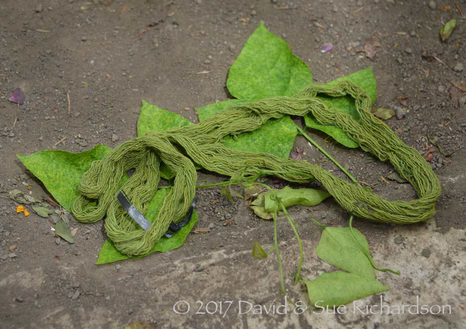 Description: A skein of cotton dyed with utan herani