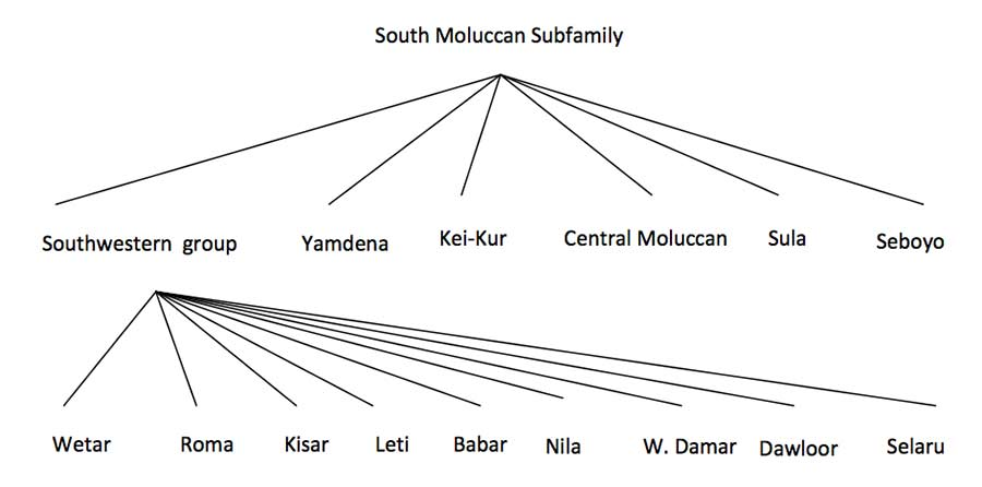 Description: South Maluku language classification after Chlenov 1976