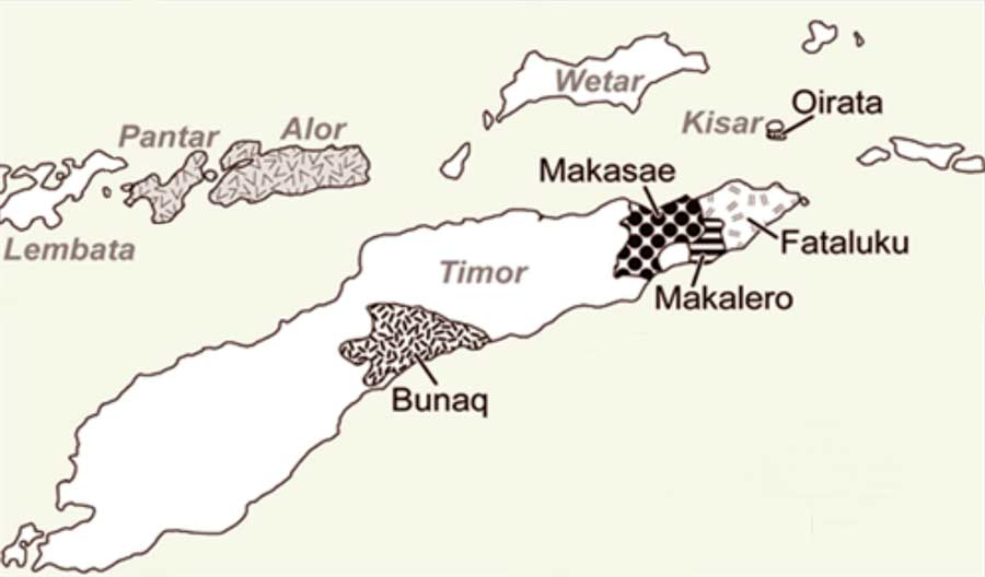 Description: The Papuan Languages of Timor and Kisar